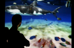 Acuario virtual gigante